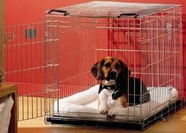 Savic Dog Residence szállítóbox  76cm