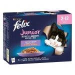 Felix Fantastic junior in jelly - marha,csirke,lazac,szardínia aszpikban (12x85g)