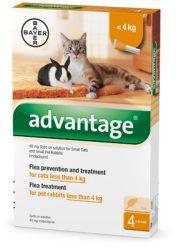 Advantage spot on ampulla macska és nyúl részére 4kg alatt 1 ampulla