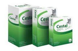 Cestal Cat  féreghajtó  rágótabletta 1db
