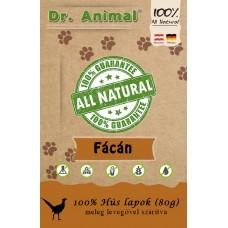 Dr. Animal 100% szárított fácánhús lapok 80g