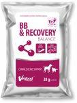 MP BB Recovery Balance por 20g